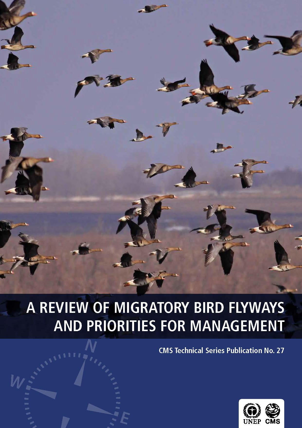 Capa da A review of migratory bird flyways and priorities for management.